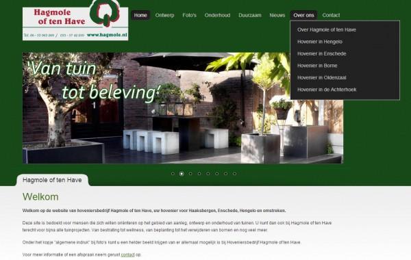 SEO en websitebeheer Hagmole